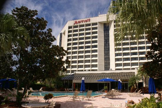 Tampa Marriott Westshore: The hotel and pool