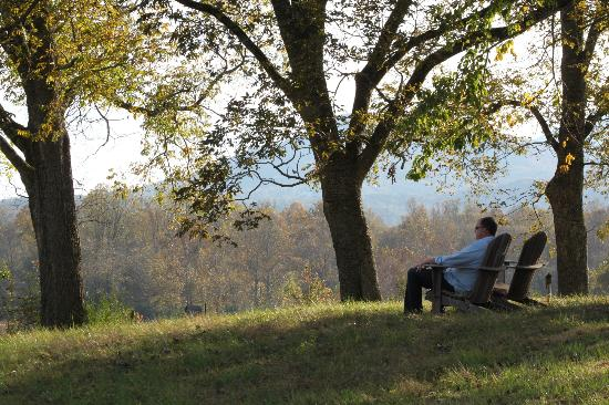 Stovall House: My husband enjoying the beautiful view from the Adirondack chair in the backyard