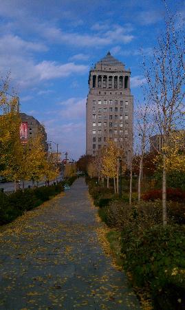 City Garden: Fall has arrived!