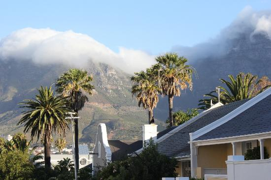 The Colony: view of table mountain