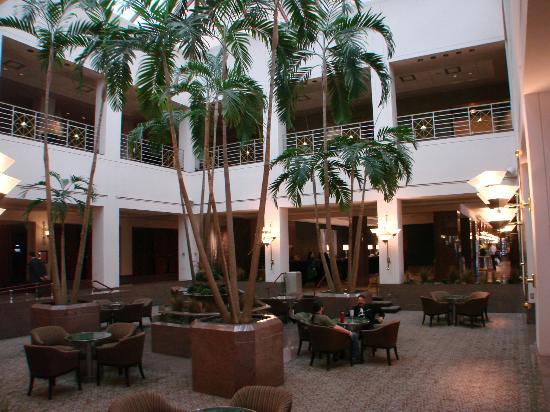 Hyatt Regency Albuquerque: lobby