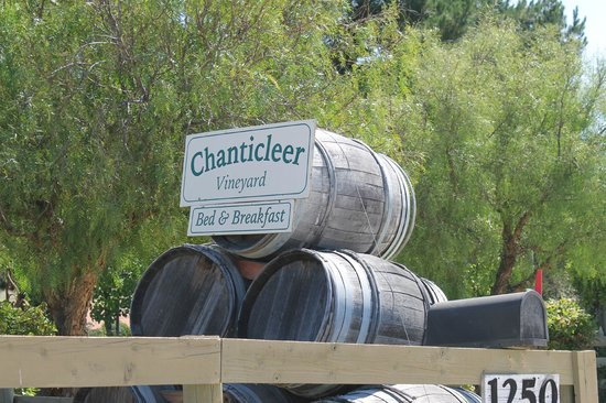Chanticleer Vineyard Bed and Breakfast: As you drive up