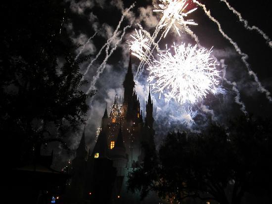 베이 레이크 타워 앳 디즈니스 컨템퍼러리 리조트 사진