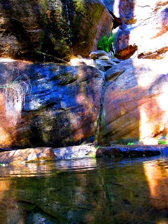 Spicers Sangoma Retreat: water feature