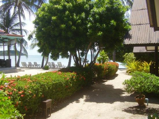 Secret Garden Beach Resort: Stayed in another room across the way near the garden