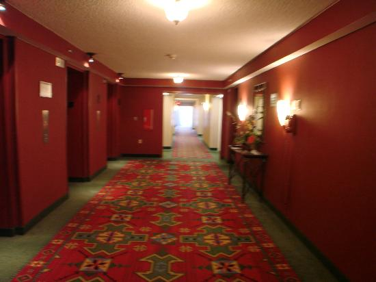Albuquerque Marriott: clean hallway