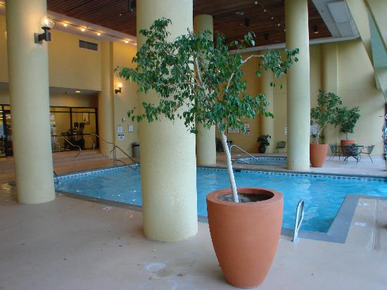 Albuquerque Marriott: indoor/outdoor pool