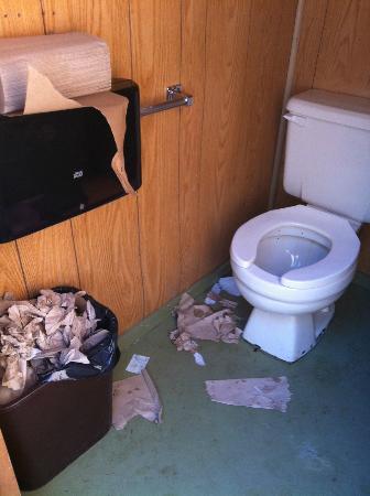 Disgusting Dirty Filthy Bathroom