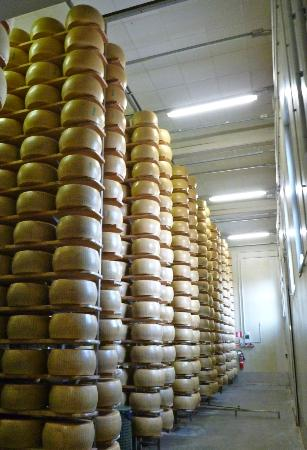 Italian Days Food Experience: Parmigiano aging room
