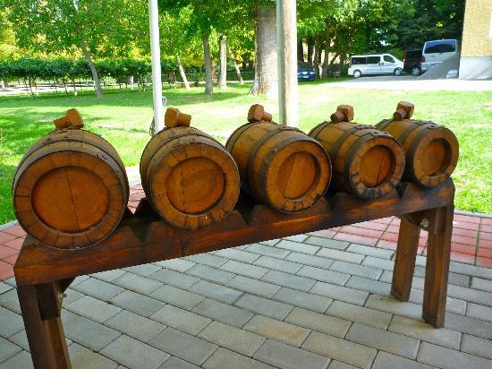 """Гастрономический тур """"Итальянские дни"""": Balsamic casks"""