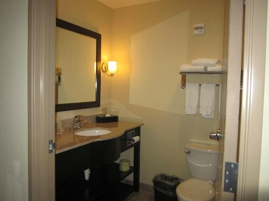 Holiday Inn Express Hotel & Suites Grand Island: bathroom