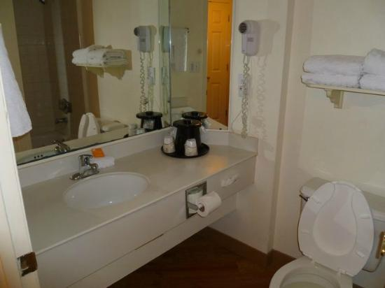 La Quinta Inn & Suites Ft Lauderdale Cypress Creek: Salle de bain