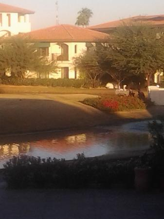 Arizona Grand Resort & Spa: Early morning photo from my porch, beautiful!