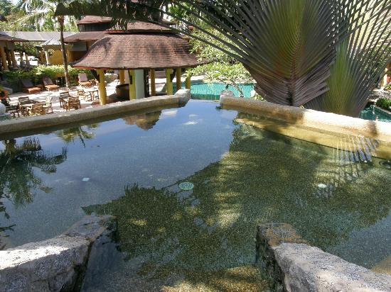The Village Resort and Spa: The Spa that forms the waterfall into the pool
