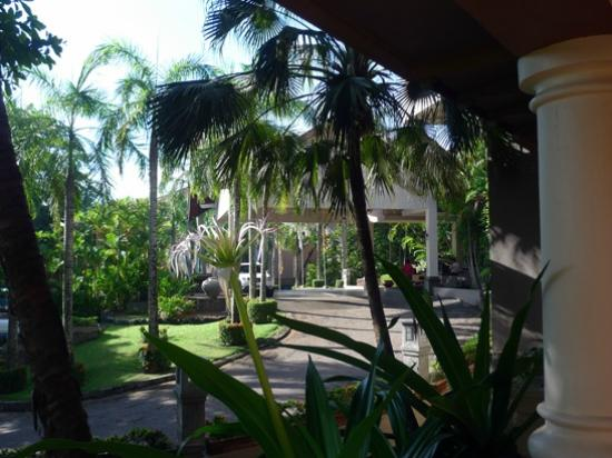 Royal Palms Beach Hotel: Driveway