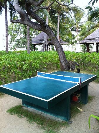 ibis Samui Bophut: Tischtennis