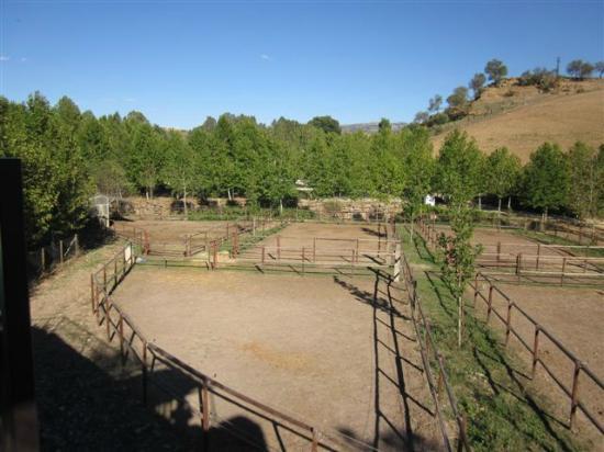 Hotel Alavera de los Banos: Horse yards at rear 