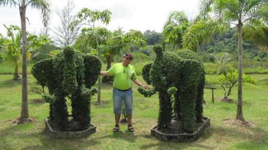 L'esprit de Naiyang Resort: me :)