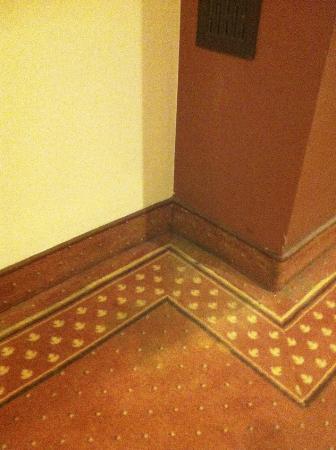 Centrum Szkoleniowo-Konferencyjne Falenty: Dirty old carpet