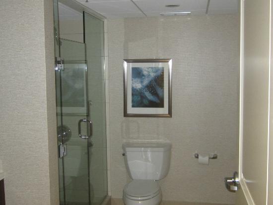 Chicago Marriott O'Hare: Large modern bathroom
