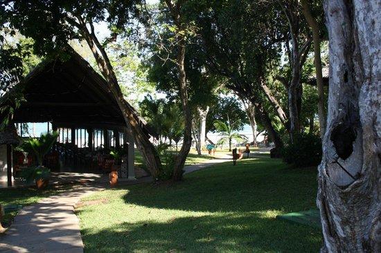 Baobab Beach Resort & Spa:                                     Walk way to reception