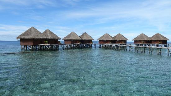 มิริฮิ ไอแลนด์ รีสอร์ท: Mirihi island resorts