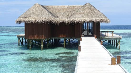 Mirihi island resorts