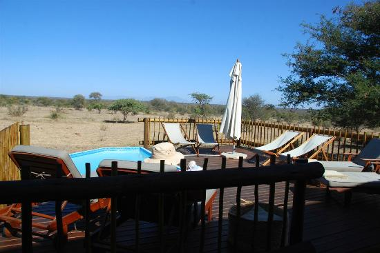 nThambo Tree Camp: Plunge pool and deck.