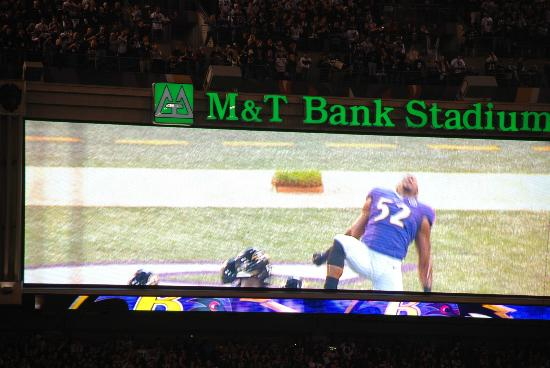 M&T Bank Stadium照片