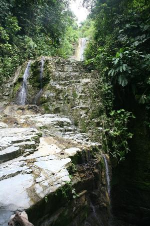 Selva Bananito Lodge: One of the many waterfalls