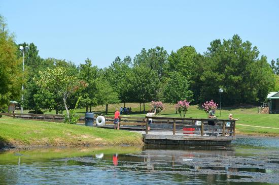 fishing pond - Picture of Texas Freshwater Fisheries Center