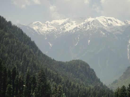 JKTDC Pahalgaon Huts: View from Hut