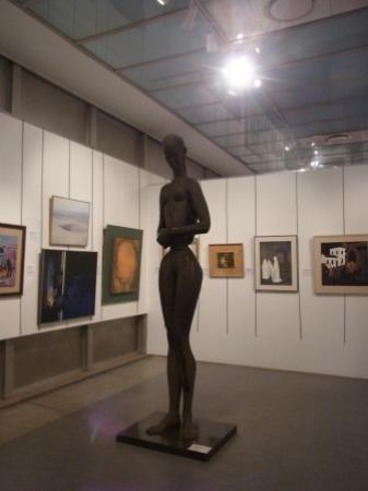 The Pretoria Art Museum: Pretoria Art Museum permanent collection