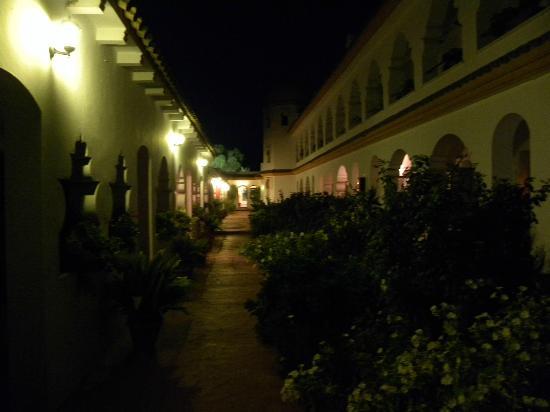 Hostal Alhambra: Giardino