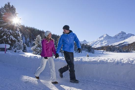 Engadin St. Moritz, Zwitserland: Winter walking in Staz forest