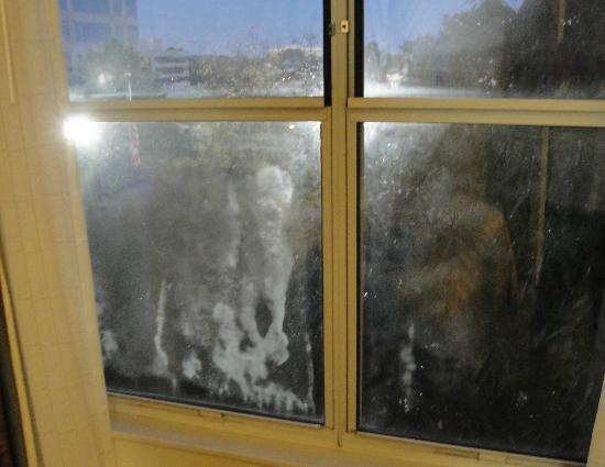 Embassy Suites by Hilton Memphis: dirty windows (That's not condensation. It's dirt!)