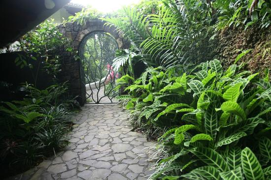 Finca Rosa Blanca Coffee Plantation & Inn: Garden of Las Aves inside