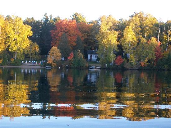 Algonquin Woods Cottage Resort: Cottages in Fall