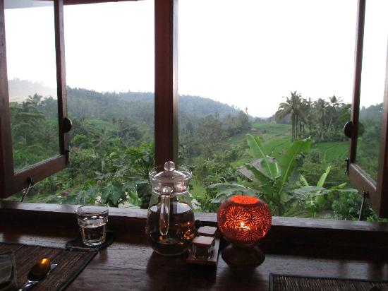 Bali Eco Stay Bungalows: View from the restaurant