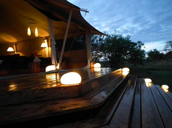 Serengeti Bushtops Camp 사진