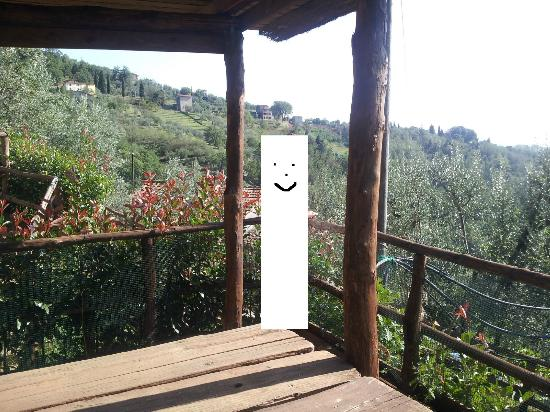 Azienda Agricola Biancospino: One of the views in the garden