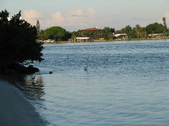Lovers Key Resort: View from Flipper Restaurant
