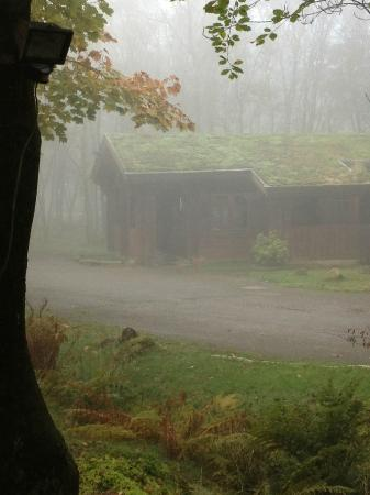 Chevin Country Park Hotel & Spa: looking out from our Lodge on a misty day
