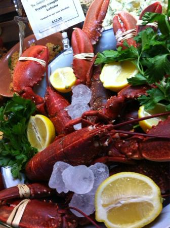 The Sussex Produce Company: Local lobster off the small boats at Shoreham