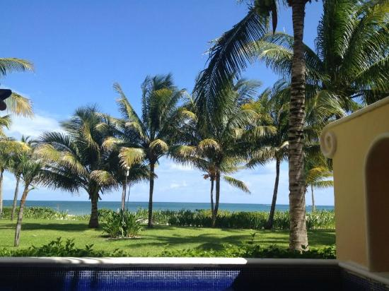 Zoetry Paraiso de La Bonita: Our King Plunge Pool View!