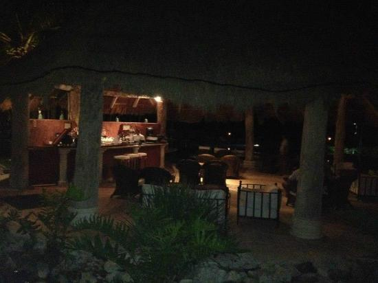 Zoetry Paraiso de La Bonita: Hippo Bar