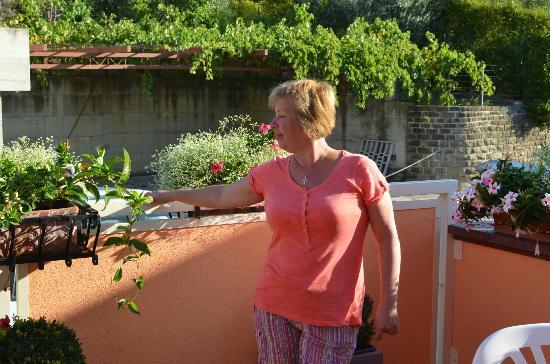 Pension SILVIA照片