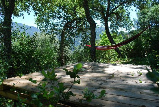 Cloud House Farm Yurt Holidays: Kick back on your very own private decking & hammock