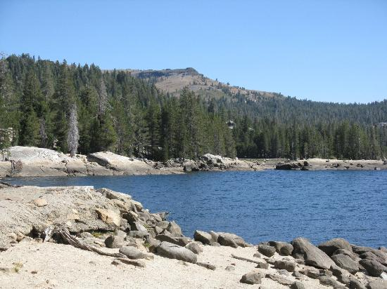 Bear Valley Ca >> Looking East From The Boat Ramp At Lake Alpine Picture Of Lake