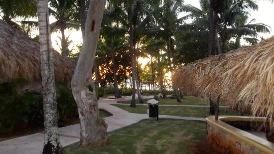 Viva Wyndham Dominicus Beach: Vista desde el bungalow 1247